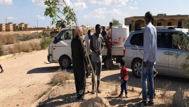 Photo of A campaign to plant the main streets of Tawergha begins