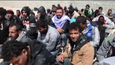 Photo of 88 irregular migrants deported in Tobruk
