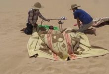 Photo of Beginning of season of sand bath treatment