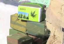 Photo of Hashish seized in a cattle truck
