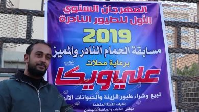 Photo of Best pigeon breeds competition held in Tobruk
