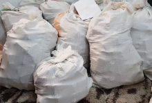 Photo of Cannabis seized in Ajdabiya city in east Libya