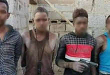Photo of Four rustlers arrested in in the Municipality of Bint Bia