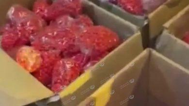 Photo of 120.000 Tramadol pills seized at Benina International Airport