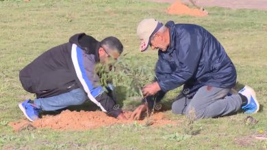 Photo of Afforestation campaign kicked off in Tripoli