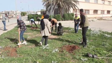 Photo of Volunteers launch an afforestation campaign in Al-Bayda