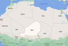 Photo of Drugs bound for Libya seized in Niger