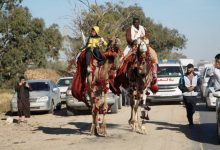 Photo of Two peace advocates traveling on camels arrived in Zliten city